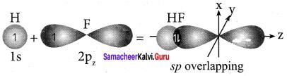 Samacheer Kalvi 11th Chemistry Solutions Chapter 10 Chemical Bonding-125