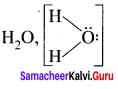 Samacheer Kalvi 11th Chemistry Solutions Chapter 10 Chemical Bonding-157