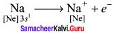 Samacheer Kalvi 11th Chemistry Solutions Chapter 10 Chemical Bonding-163