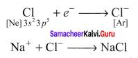 Samacheer Kalvi 11th Chemistry Solutions Chapter 10 Chemical Bonding-164