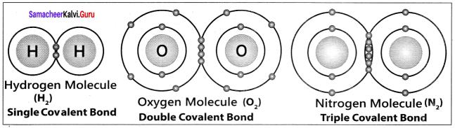 Samacheer Kalvi 11th Chemistry Solutions Chapter 10 Chemical Bonding-167