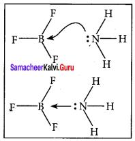 Samacheer Kalvi 11th Chemistry Solutions Chapter 10 Chemical Bonding-169
