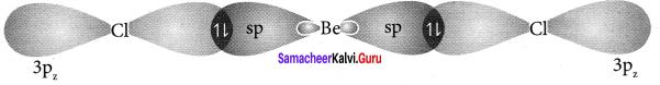 Samacheer Kalvi 11th Chemistry Solutions Chapter 10 Chemical Bonding-174