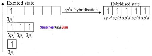 Samacheer Kalvi 11th Chemistry Solutions Chapter 10 Chemical Bonding-178