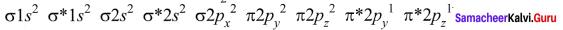 Samacheer Kalvi 11th Chemistry Solutions Chapter 10 Chemical Bonding-19