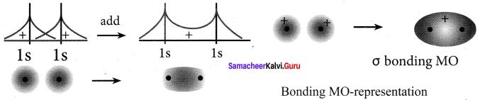 Samacheer Kalvi 11th Chemistry Solutions Chapter 10 Chemical Bonding-23