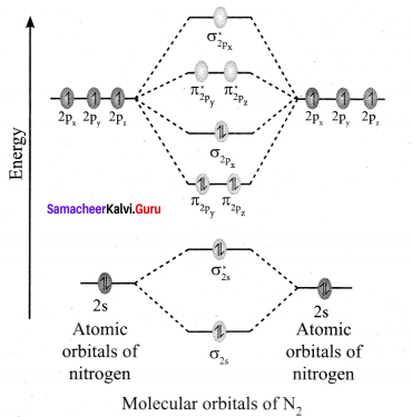 Samacheer Kalvi 11th Chemistry Solutions Chapter 10 Chemical Bonding-26