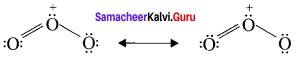 Samacheer Kalvi 11th Chemistry Solutions Chapter 10 Chemical Bonding-32