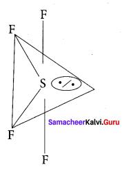 Samacheer Kalvi 11th Chemistry Solutions Chapter 10 Chemical Bonding-7