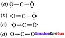 Samacheer Kalvi 11th Chemistry Solutions Chapter 10 Chemical Bonding-71