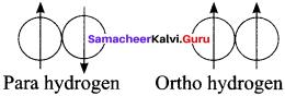Samacheer Kalvi 11th Chemistry Guide Pdf Solutions Chapter 4 Hydrogen