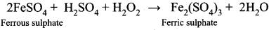 Chemistry Class 11 Samacheer Kalvi Solutions Chapter 4 Hydrogen
