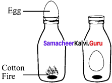 Gaseous State Questions And Answers Pdf Samacheer Kalvi 11th Chemistry Solutions Chapter 6