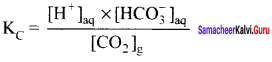 Samacheer Kalvi 11th Chemistry Solutions Chapter 8 Physical and Chemical Equilibrium-59