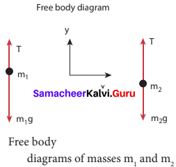 Samacheer Kalvi 11th Physics Book Back Answers Chapter 3 Laws Of Motion