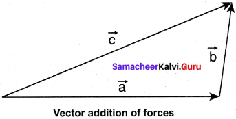 Samacheer Kalvi 11th Physics Solutions Chapter 3 Laws of Motion