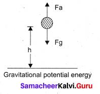 Samacheer Kalvi 11th Physics Solutions Chapter 4 Work, Energy and Power 100