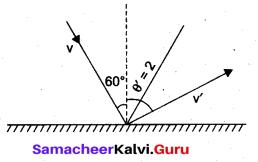 Samacheer Kalvi 11th Physics Solutions Chapter 4 Work, Energy and Power 60