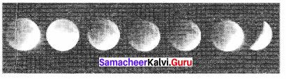 Samacheer Kalvi 11th Physics Solutions Chapter 6 Gravitation 111