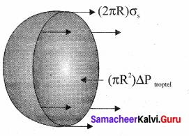 Samacheer Kalvi 11th Physics Solutions Chapter 7 Properties of Matter 75