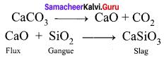 Samacheer Kalvi Guru 12th Chemistry Solutions Chapter 1 Metallurgy