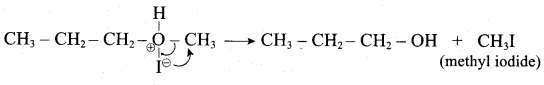 Samacheer Kalvi 12th Chemistry Solutions Chapter 11 Hydroxy Compounds and Ethers-24