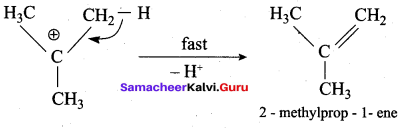Samacheer Kalvi 12th Chemistry Solutions Chapter 11 Hydroxy Compounds and Ethers-241
