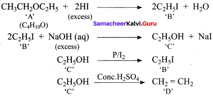 Samacheer Kalvi 12th Chemistry Solutions Chapter 11 Hydroxy Compounds and Ethers-258