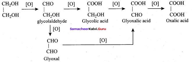 Samacheer Kalvi 12th Chemistry Solutions Chapter 11 Hydroxy Compounds and Ethers-205