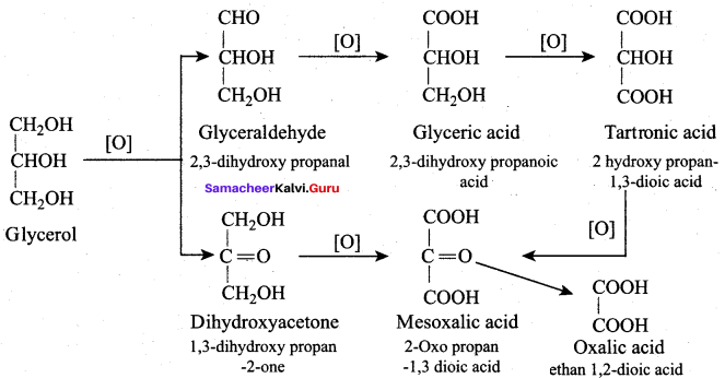 Samacheer Kalvi 12th Chemistry Solutions Chapter 11 Hydroxy Compounds and Ethers-206