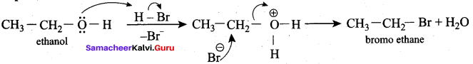 Samacheer Kalvi 12th Chemistry Solutions Chapter 11 Hydroxy Compounds and Ethers-196