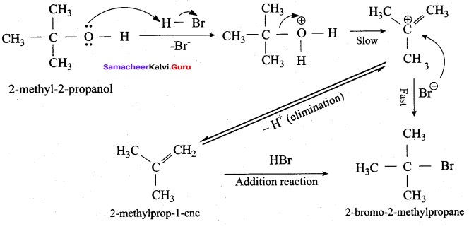 Samacheer Kalvi 12th Chemistry Solutions Chapter 11 Hydroxy Compounds and Ethers-197