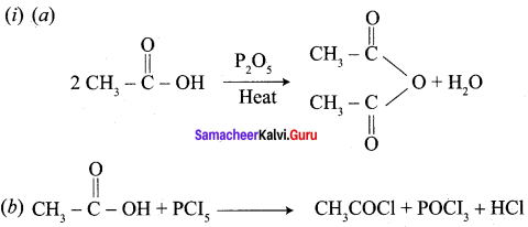 Samacheer Kalvi 12th Chemistry Solutions Chapter 12 Carbonyl Compounds and Carboxylic Acids-261