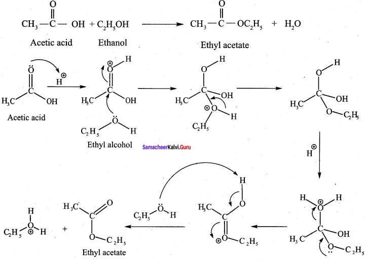 Samacheer Kalvi 12th Chemistry Solutions Chapter 12 Carbonyl Compounds and Carboxylic Acids-278