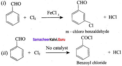 Samacheer Kalvi 12th Chemistry Solutions Chapter 12 Carbonyl Compounds and Carboxylic Acids-226