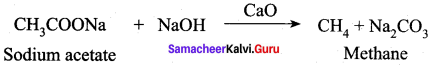 Samacheer Kalvi 12th Chemistry Solutions Chapter 12 Carbonyl Compounds and Carboxylic Acids-233