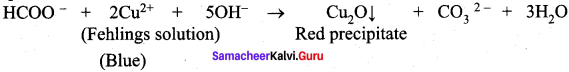 Samacheer Kalvi 12th Chemistry Solutions Chapter 12 Carbonyl Compounds and Carboxylic Acids-239
