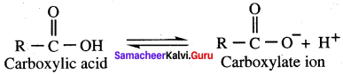 Samacheer Kalvi 12th Chemistry Solutions Chapter 12 Carbonyl Compounds and Carboxylic Acids-240