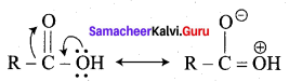 Samacheer Kalvi 12th Chemistry Solutions Chapter 12 Carbonyl Compounds and Carboxylic Acids-252