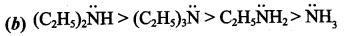 Samacheer Kalvi 12th Chemistry Solutions Chapter 13 Organic Nitrogen Compounds-219