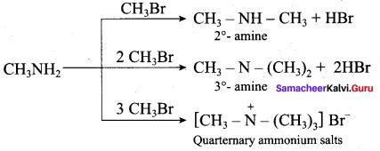 Samacheer Kalvi 12th Chemistry Solutions Chapter 13 Organic Nitrogen Compounds-135