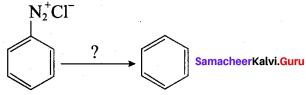 Samacheer Kalvi 12th Chemistry Solutions Chapter 13 Organic Nitrogen Compounds-227