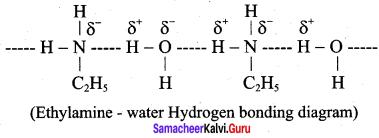 Samacheer Kalvi 12th Chemistry Solutions Chapter 13 Organic Nitrogen Compounds-64