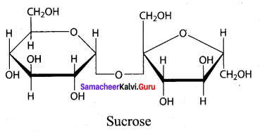 Samacheer Kalvi 12th Chemistry Solutions Chapter 14 Biomolecules-30
