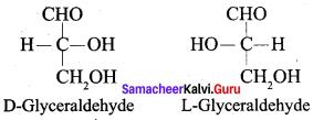 Samacheer Kalvi 12th Chemistry Solutions Chapter 14 Biomolecules-32