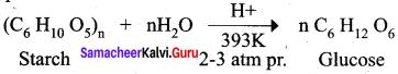 Samacheer Kalvi 12th Chemistry Solutions Chapter 14 Biomolecules-39