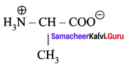Samacheer Kalvi 12th Chemistry Solutions Chapter 14 Biomolecules-4
