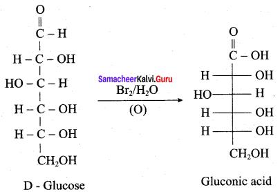Samacheer Kalvi 12th Chemistry Solutions Chapter 14 Biomolecules-40