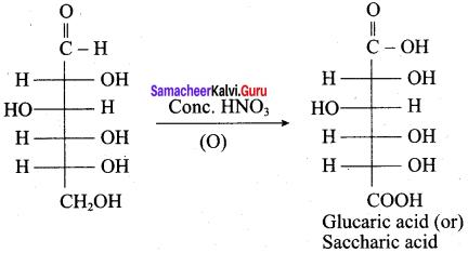 Samacheer Kalvi 12th Chemistry Solutions Chapter 14 Biomolecules-41