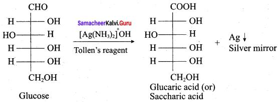 Samacheer Kalvi 12th Chemistry Solutions Chapter 14 Biomolecules-42